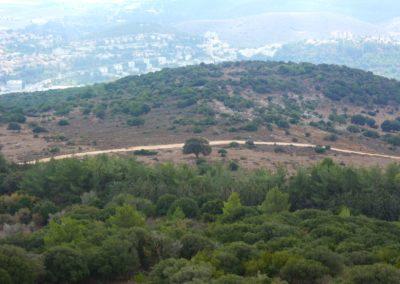 Holy Land 2013 121-1600